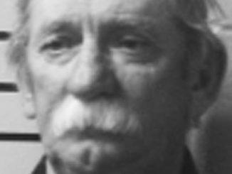 Hillsboro man pleads guilty to harassment