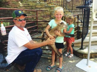 Farmers Market event promotes healthy living
