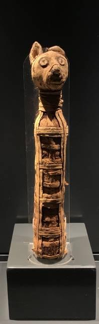 Egypt exhibit on display at Cincinnati Museum Center