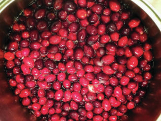 Not Thanksgiving without the cranberries